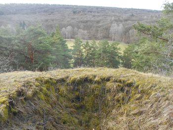 Abb. 2: Von dem Maschinengewehrstand, der auf dem Berg nördlich des Lagers angelegt war, konnte das Lager überblickt werden, hier Blick auf den Appellplatz. © Landesamt für Denkmalpflege und Archäologie, Mechthild Klamm.