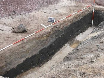 Abb. 4: Die Schicht aus verrottender organischer Substanz. © Landesamt für Denkmalpflege und Archäologie Sachsen-Anhalt, Frank Besener.
