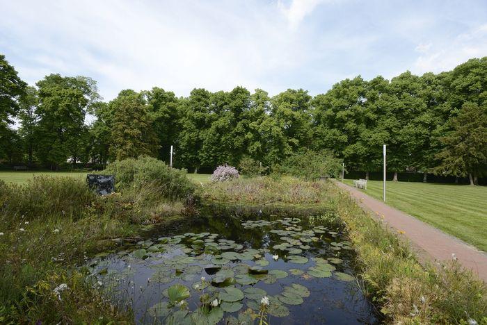 Abb. 2: Seerosenteich im Kurpark Bad Schmiedeberg. © Landesamt für Denkmalpflege und Archäologie Sachsen-Anhalt, Gunnar Preuß.
