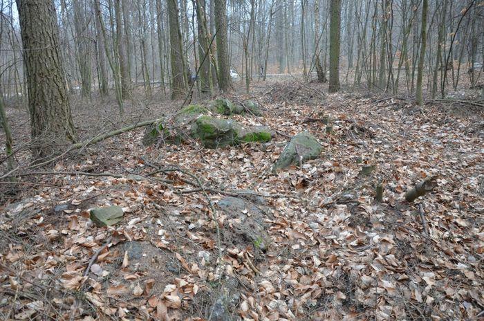 Abb. 18: Großsteingrab Marienborn Fundplatz 6. © Landesamt für Denkmalpflege und Archäologie Sachsen-Anhalt, Astrid Deffner.
