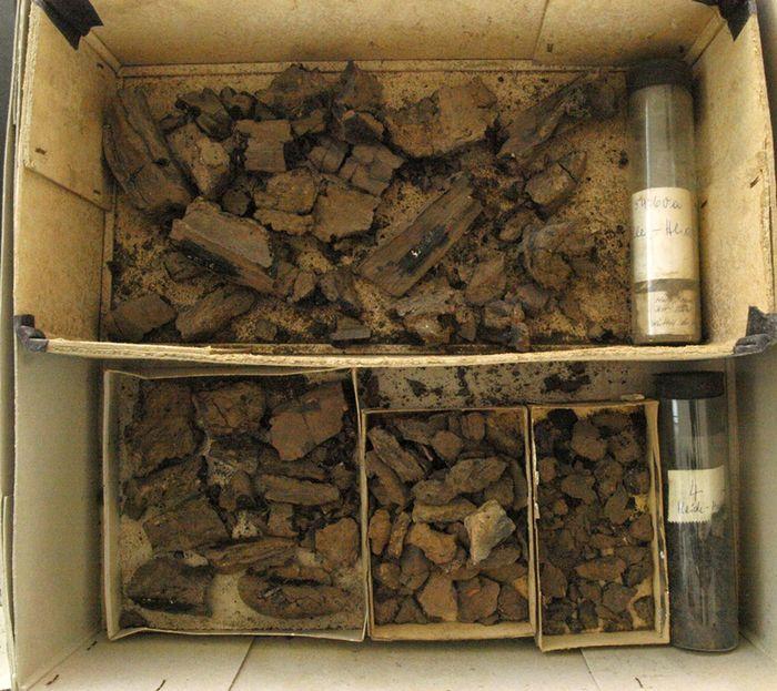 Abb. 4: Die Funde aus Grab 4 im Zustand der »Wiederauffindung« im Jahr 2013. © Landesamt für Denkmalpflege und Archäologie Sachsen-Anhalt, Maral Schumann.