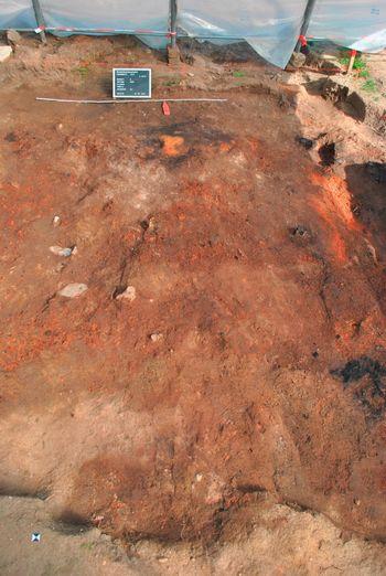 Abb. 3a: Unter einer massiven Brandschicht konnten Mauerfundamente und verkohlte Holzkonstruktionsteile (Abb. 3b) dokumentiert werden.  © Landesamt für Denkmalpflege und Archäologie Sachsen-Anhalt, W. Thoma.