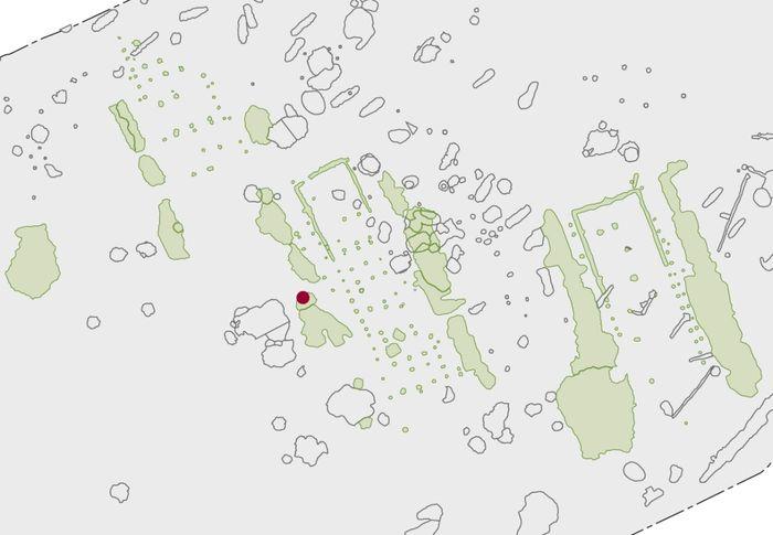 Abb. 1: Linienbandkeramische Hausgrundrisse und die Lage der Säuglingsbestattung. © Landesamt für Denkmalpflege und Archäologie Sachsen-Anhalt, M. Melzer.