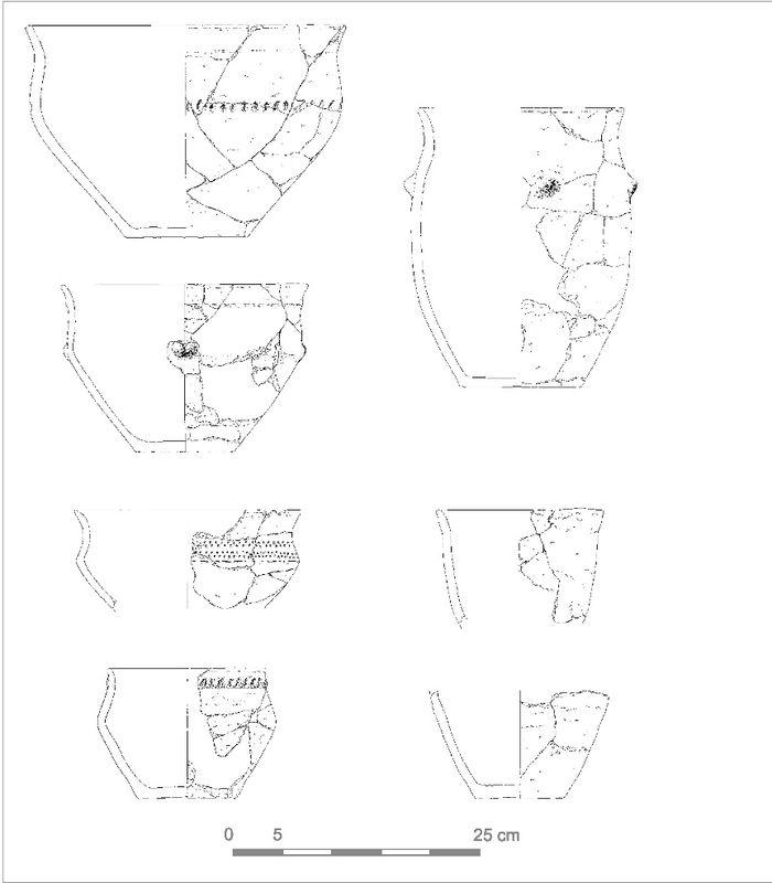 Abb. 6: Libehna, Fundstelle 8. Trichterrandschüsseln und S-förmig profilierte Töpfe aus Befund 2030. © Landesamt für Denkmalpflege und Archäologie Sachsen-Anhalt, Zeichnung: Melanie Reuter, Zusammenstellung: Andrea Hinz.