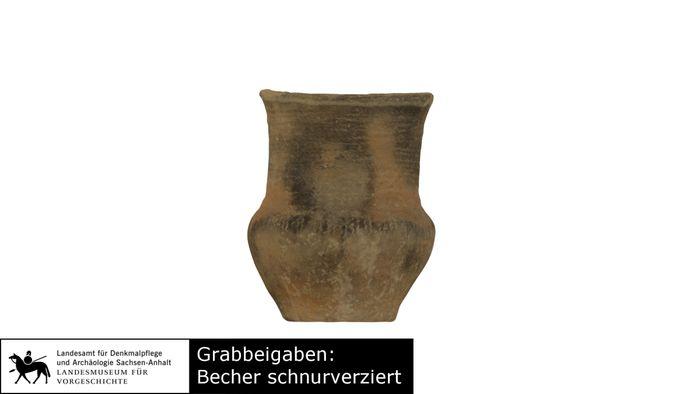 Abb. 16: Der schnurkeramische Becher im 3D-Modell. © Landesamt für Denkmalpflege und Archäologie Sachsen-Anhalt.