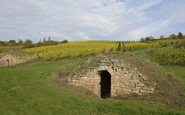 Abb. 2: Zwei der 161 sogenannten Weinberghütten. © Landesamt für Denkmalpflege und Archäologie Sachsen-Anhalt, Gunnar Preuß.