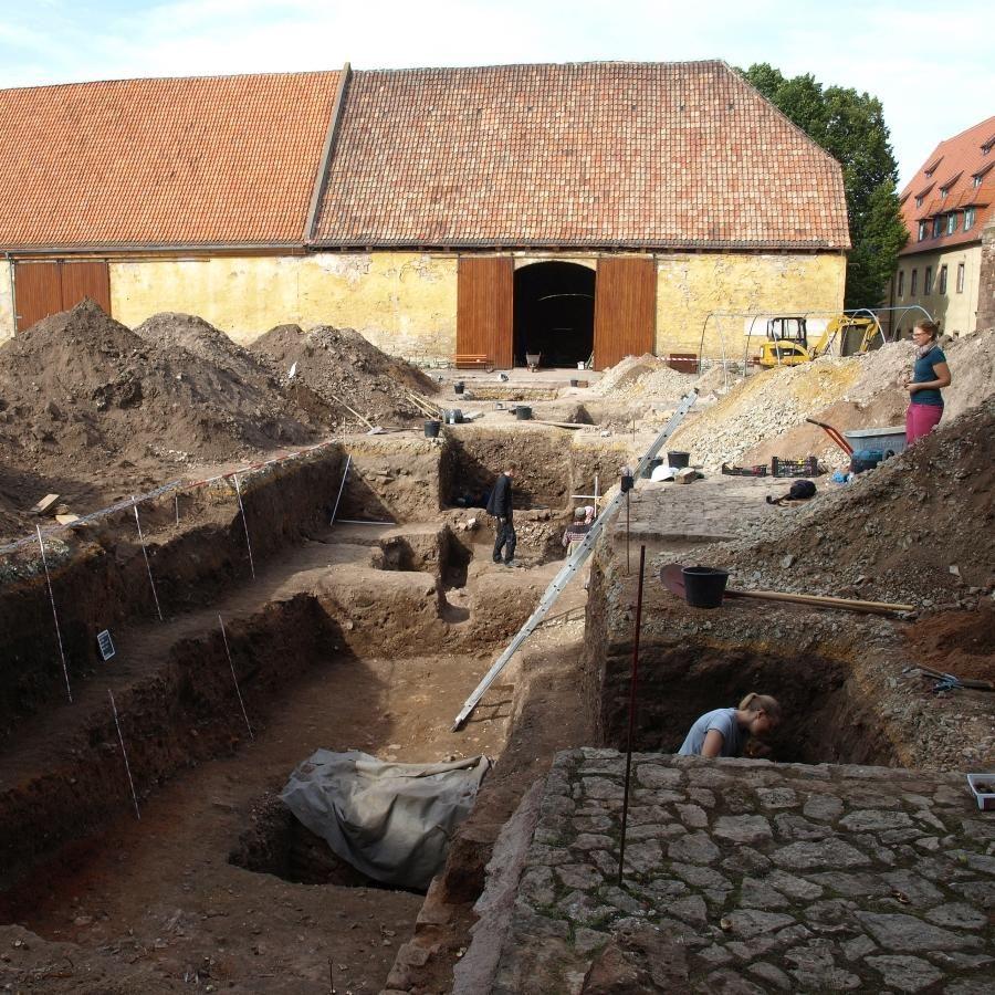 Verschiedene Grabungsflächen in Bearbeitung (Blick nach Norden). © Landesamt für Denkmalpflege und Archäologie Sachsen-Anhalt, Holger Grönwald.