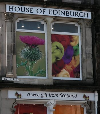 Abb. 5: Ein Beispiel für die Allgegenwart der Distel in Schottland: Touristenshop in Edinburgh. © Landesamt für Denkmalpflege und Archäologie Sachsen-Anhalt, Eva-Carmen Szabó.