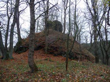 Abb. 3: Kernburg der Heinrichsburg an der höchsten Stelle der Anlage. © Landesamt für Denkmalpflege und Archäologie Sachsen-Anhalt, Anna Swieder.