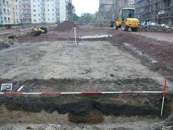 Abb. 3: Reste der Siedlungsgruben. © Landesamt für Denkmalpflege und Archäologie Sachsen-Anhalt, Frank Besener.