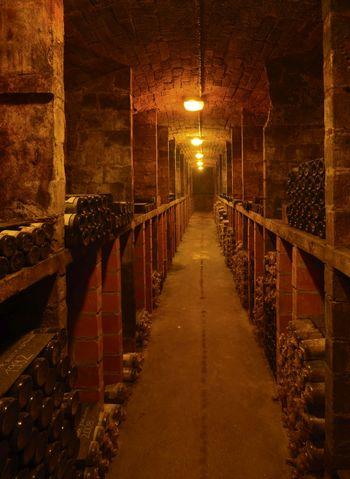 Abb. 2: Blick in einen der Weinkeller der Saalhäuser. © Landesamt für Denkmalpflege und Archäologie Sachsen-Anhalt, Gunnar Preuß.