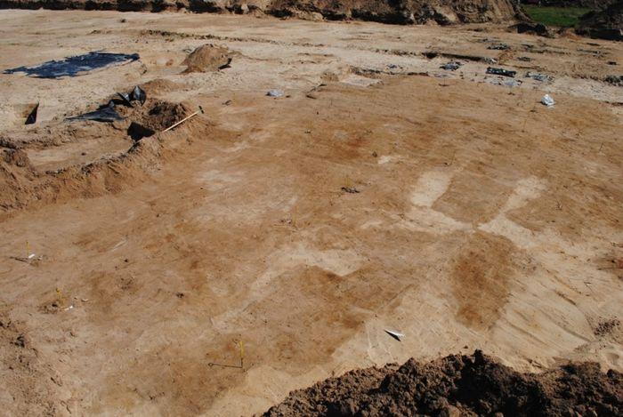 Abb. 8: Übersicht über einen Teil des Gräberfeldes im 1. Planum. Die Grabgruben sind kaum voneinander abzugrenzen, sondern bilden in den oberen Bereichen oft eine große, zusammenhängende Verfärbung. © Landesamt für Denkmalpflege und Archäologie Sachsen-Anhalt, Dorothee Menke.
