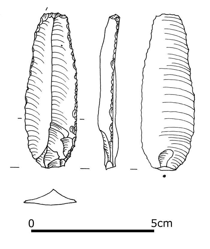 Abb. 4b: Eines der beiden im Grab gefundenen Silxwerkzeuge: die retuschierte Klinge. © Landesamt für Denkmalpflege und Archäologie Sachsen-Anhalt.