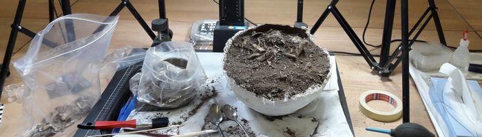 Abb. 6: Akribische Freilegung der im Block geborgenen Urnen im Labor. © Florian Helmecke.