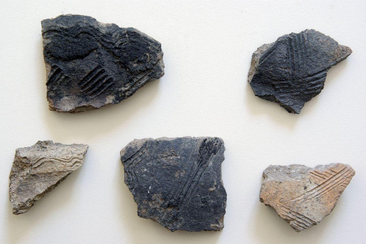 Abb. 7: Slawische Keramik. © Landesamt für Denkmalpflege und Archäologie Sachsen-Anhalt, Jens Winter.