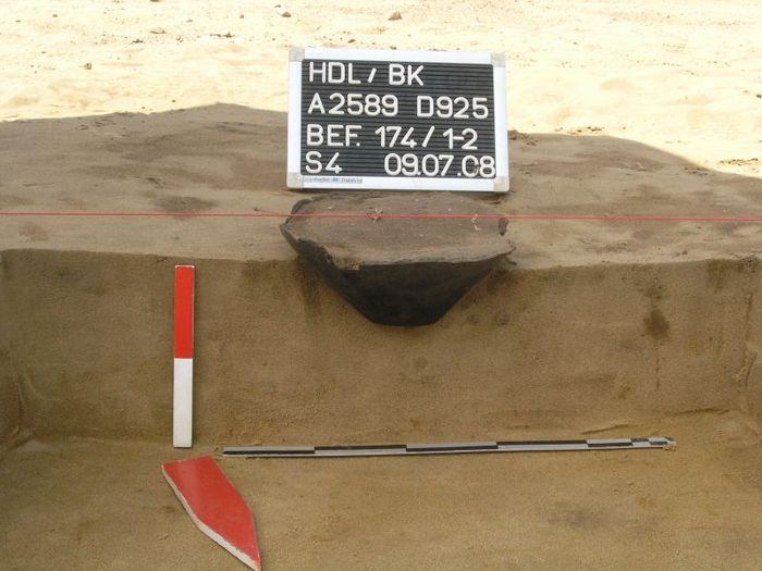 Abb. 2: Haldensleben Südhafen, Grab 5/Befund 174 (2598:174), Urnengrab. Bei den meisten Gräbern handelte es sich um in Sand eingebrachte Brandbestattungen in Urnen. Da sie nur flach eingegraben wurden, weisen fast alle Urnen im oberen Bereich starke Schäden durch Überpflügung auf. Wie das Profil eindrücklich zeigt, wurde bei der Eingrabung der Urne nahezu kein Fremdmaterial in den Boden eingebracht. Dadurch waren die Gräber oberflächlich praktisch nicht erkennbar. © Landesamt für Denkmalpflege und Archäologie Sachsen-Anhalt, S. Harnack.