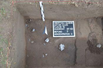 Abb. 3: Fundkonzentration während der Freilegung. © Landesamt für Denkmalpflege und Archäologie Sachsen-Anhalt.