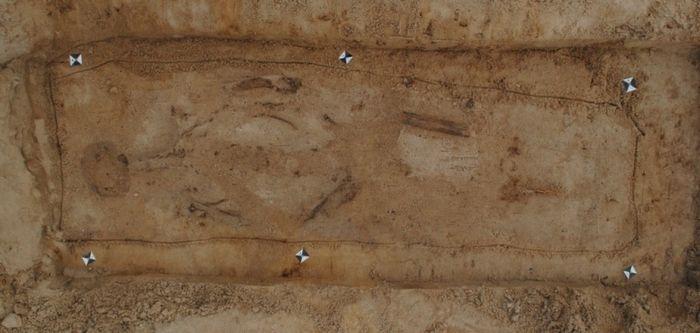 Abb. 12: Beispiel für schlechte Knochenerhaltung: Lediglich wenige Knochen sind erkennbar, der Großteil der Körperregionen ist lediglich noch als Leichenschatten sichtbar. © Landesamt für Denkmalpflege und Archäologie Sachsen-Anhalt, Dorothee Menke.