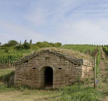 Abb. 3: Eine weitere Weinberghütte. Deutlich erkennbar sind die Bauweise und die Dachbegrünung der Hütte. © Landesamt für Denkmalpflege und Archäologie Sachsen-Anhalt, Gunnar Preuß.