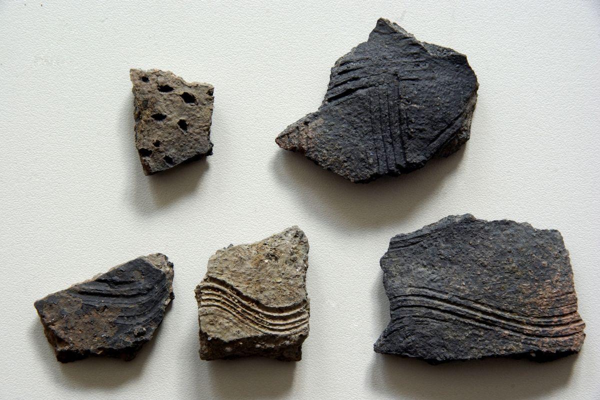 Abb. 8: Weitere Scherben slawischer Keramik. © Landesamt für Denkmalpflege und Archäologie Sachsen-Anhalt, Jens Winter.