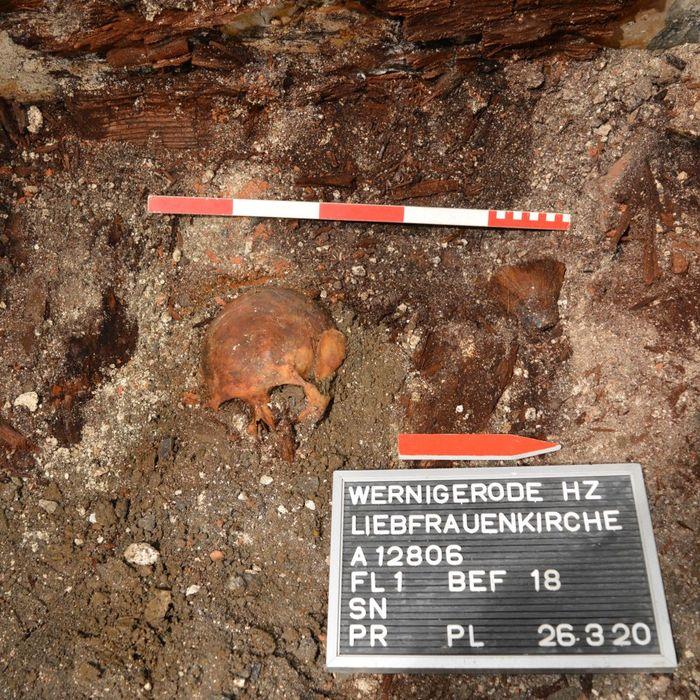 Abb. 2: Neben der linken Schulter der bestatteten Person wurde der Pinsel aufgefunden.  © Landesamt für Denkmalpflege und Archäologie Sachsen-Anhalt.