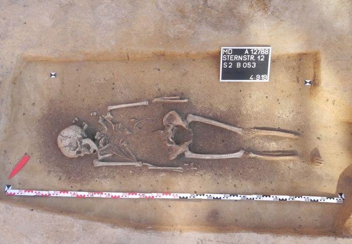 Abb. 6: Nach der Freilegung. Die Tote wurde mit Bronzeohrringen bestattet. © Landesamt für Denkmalpflege und Archäologie Sachsen-Anhalt.