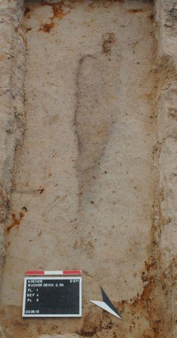 Abb. 11: Beispiel für eine schlechte Knochenerhaltung in tieferen Lagen. Hier sind lediglich poröse Schädelreste erhalten, sonst zeugt nur ein Leichenschatten von der Lage des bestatteten Individuums. © Landesamt für Denkmalpflege und Archäologie Sachsen-Anhalt, Dorothee Menke.