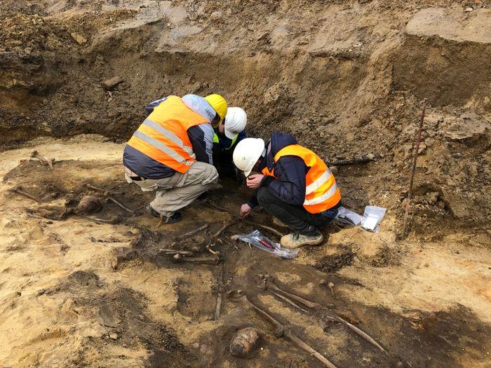Abb. 2: Anthropologen bei der Beurteilung der menschlichen Knochen direkt bei der Freilegung. © Landesamt für Denkmalpflege und Archäologie Sachsen-Anhalt.