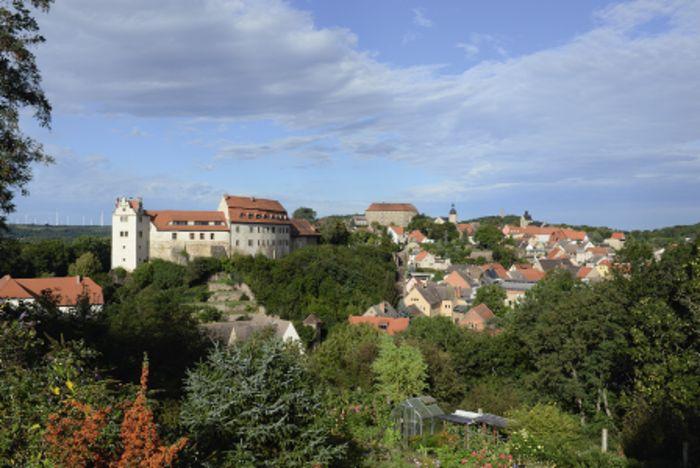 Abb. 1: Burg Wettin von Osten, im Vordergrund die Unterburg, hinten die Oberburg © Landesamt für Denkmalpflege und Archäologie Sachsen-Anhalt, Gunnar Preuß.