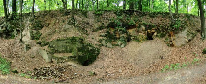 Abb. 6: Der Sandsteinbruch mit Felsenkeller (Räuberhöhle). Foto/Montage: Reinhard Duckstein.